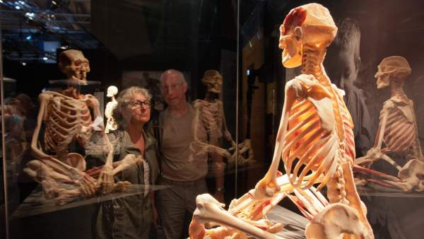 Real Human Body Exhibit
