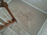Mohawk Triexta Carpet Reviews | Carpet Review