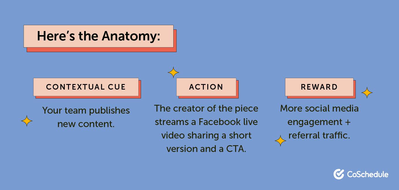 Anatomy of change
