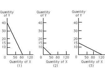 Economics 499 Quiz 2