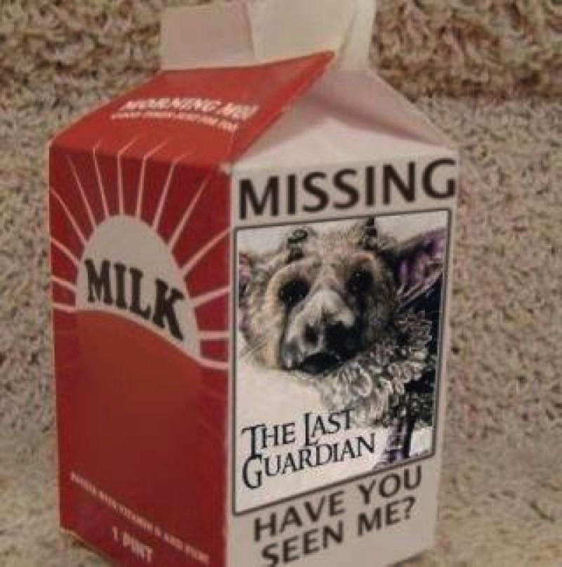 Missing last guardian