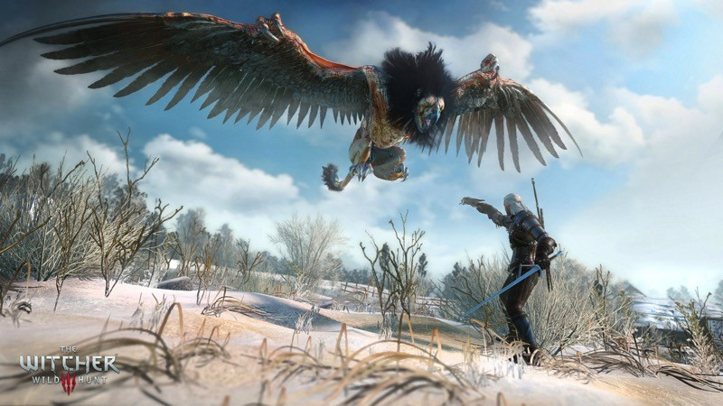 The Witcher 3 Wild Hunt Various types of enemies require different approach