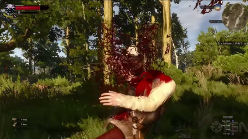 Witcher 3 finisher