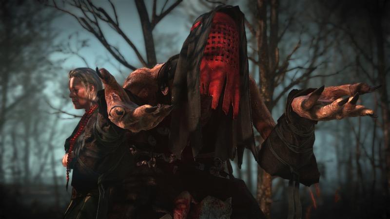 2624273-the_witcher_3_wild_hunt-witch_1407869459.jpg