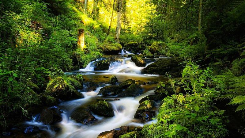 multiple streams