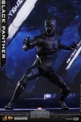 Black Panther (10)