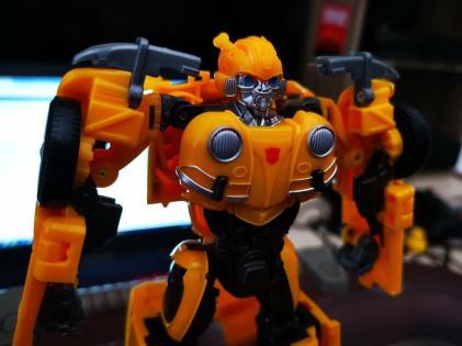 Bumblebee (10)