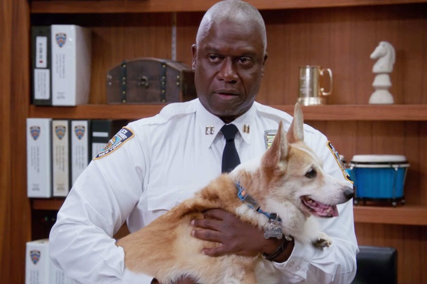 Cheddar the Corgi from TV comedy Brooklyn Nine-Nine has died