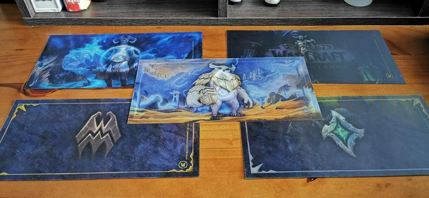 Behold the resplendent glory of this World of WarCraft: Shadowlands Epic Collector's Edition unboxing! 30