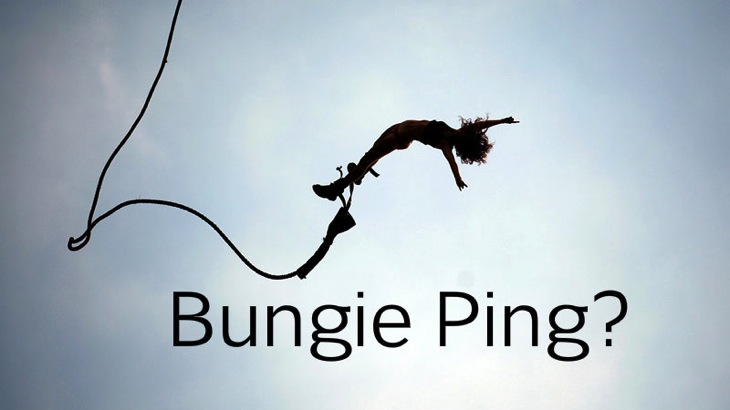 Bungie ping