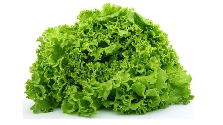 lettuce all laugh together
