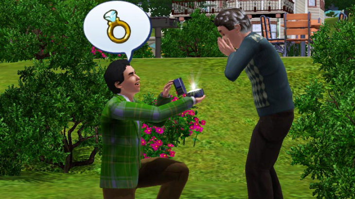 Gay sims marry