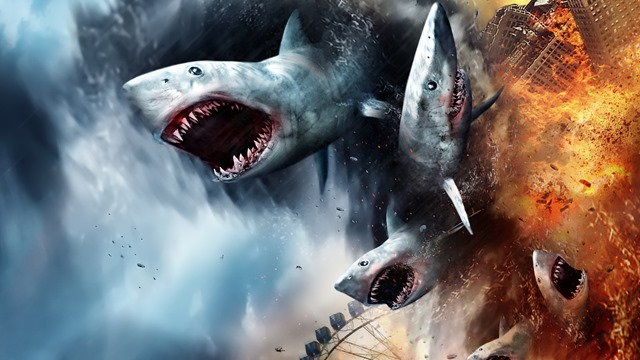 Shark happens