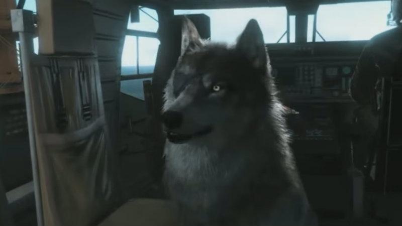 Diamond dog is mans best friend