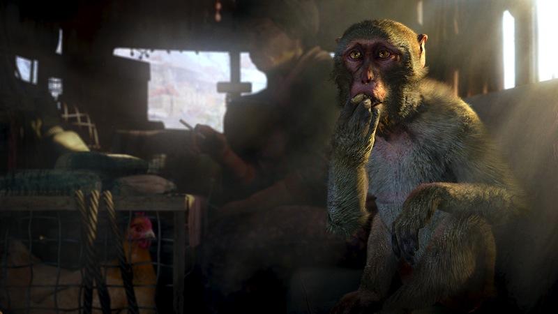 Far Cry 4 5