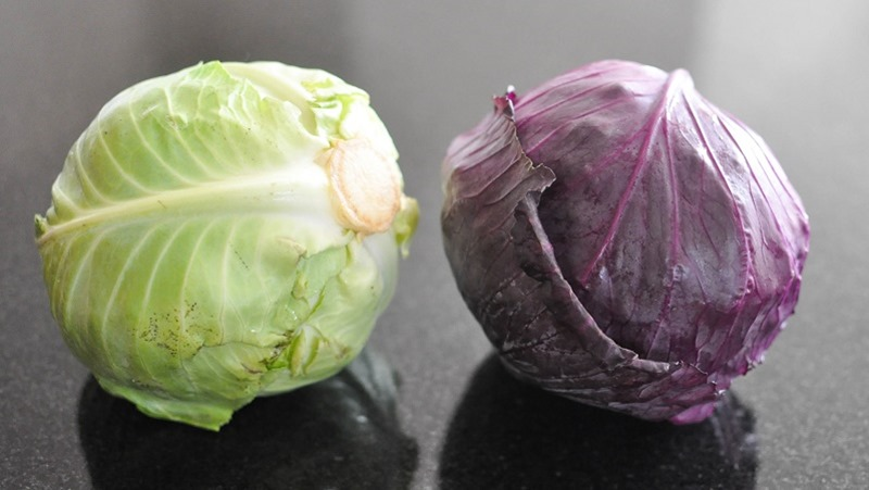 gather_s-roasted-green-and-purple-cabbage-fedfit-9