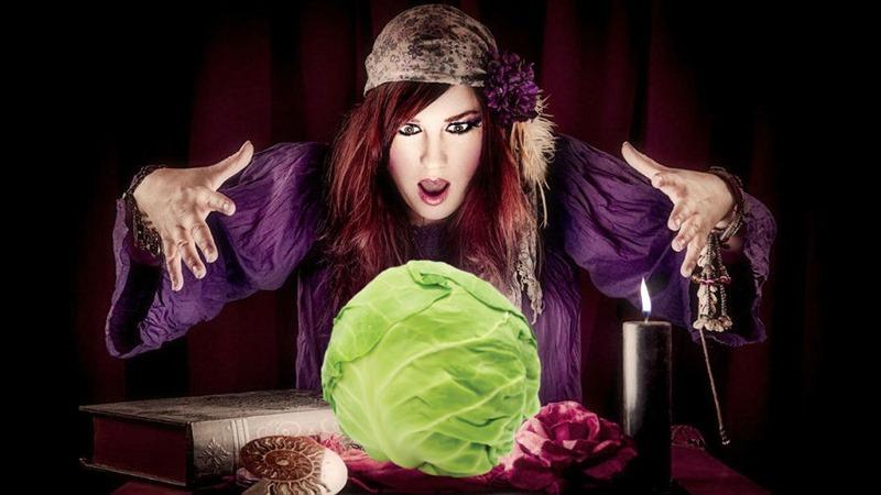 lololol cabbage