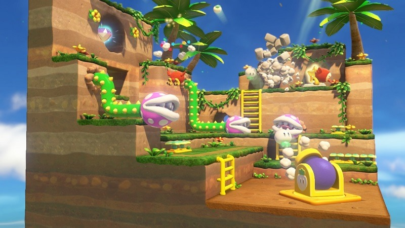 Captain Toad (4)