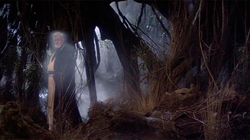 Shaw Sebastian Anakin Skywalker Star Young Wars