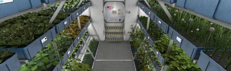 Mars food production