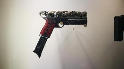 Destiny 2 guns (11)