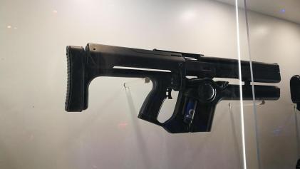 Destiny 2 guns (13)