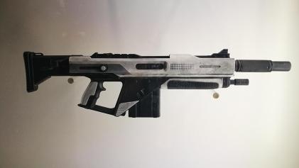 Destiny 2 guns (7)