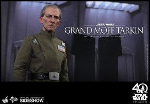 Star Wars HT Tarkin (11)