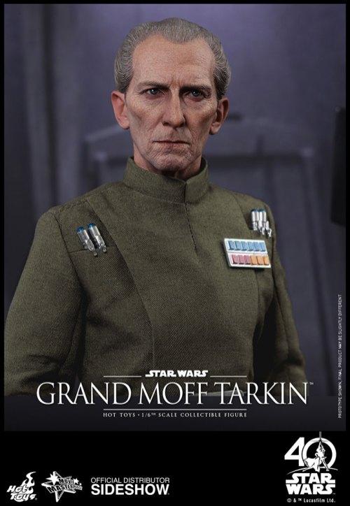 Star Wars HT Tarkin (16)