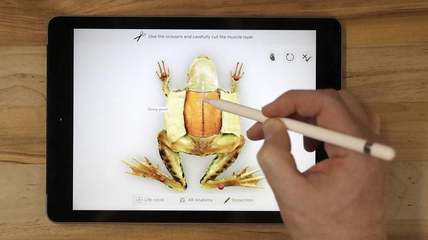 Apple reveals new Apple iPad 9.7 inch