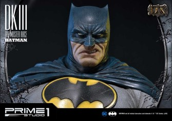 Dark Knight 3 master race (14)