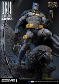 Dark Knight 3 master race (7)