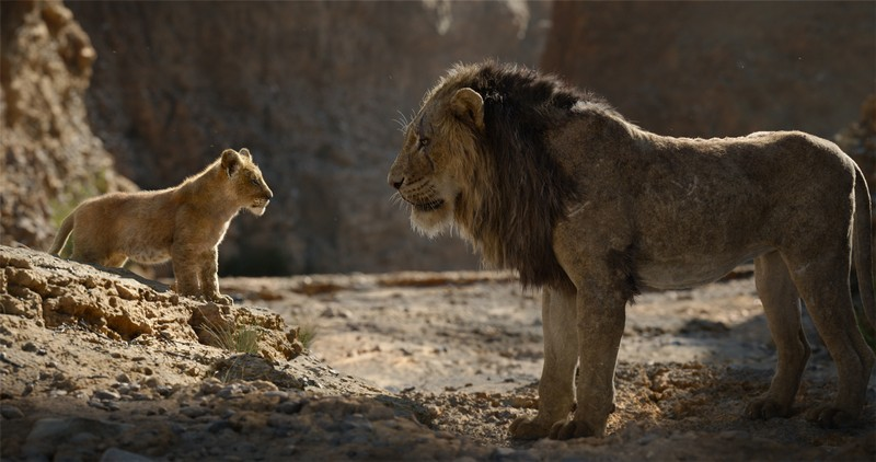 Weekend box office – The Lion King roars in cinemas with massive opening