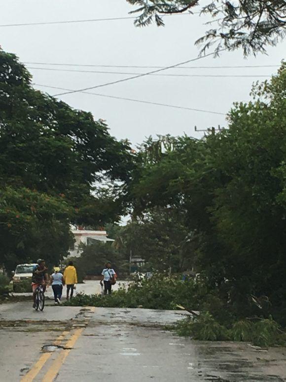En Playa. Foto: RAF / Cubadebate