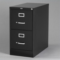 Hirsh Industries Vertical Files 2 Drawer Letter File ...