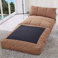 Gold Sparrow Austin Convertible Bean Bag Chair Bed in ...