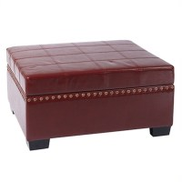 Storage Ottoman with Tray in Cherry Eco Leather - DTR3630-CBD