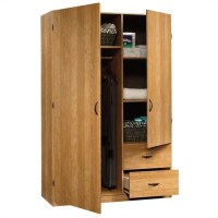 Sauder Beginnings Storage Cabinet in Highland Oak - 413328