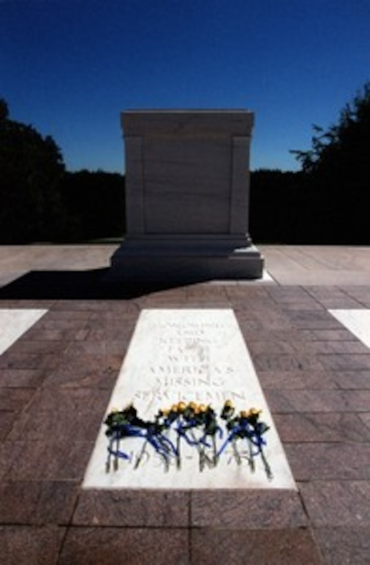 Doug Briney, Unknown Soldiers, The Tomb of The Unknown Soldier