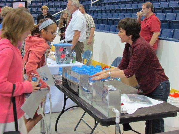 Promoting Stem Education And Careers