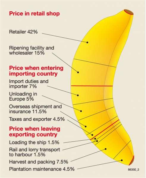 Banana Farms Map Ecuador