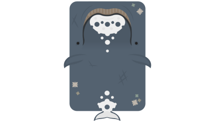 grey bowhead whale variants dark 553f discordapp a5fe 479c attachments requested