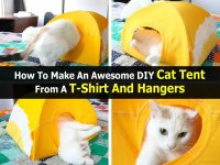 How To Make An Awesome DIY Cat Tent From A T-Shirt And Hangers
