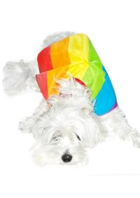 Rainbow Dog Cape Costume | Dolls Kill