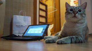 laptop maguay (52)