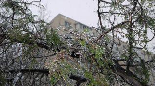 freeezing rain in Bucuresti polei in bucuresti iarna zapada viscol cod portocaliu (1)
