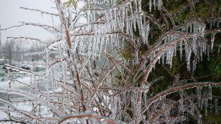 freeezing rain in Bucuresti polei in bucuresti iarna zapada viscol cod portocaliu (114)