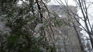 freeezing rain in Bucuresti polei in bucuresti iarna zapada viscol cod portocaliu (12)
