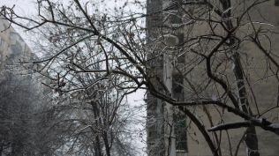 freeezing rain in Bucuresti polei in bucuresti iarna zapada viscol cod portocaliu (162)