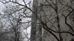 freeezing rain in Bucuresti polei in bucuresti iarna zapada viscol cod portocaliu (26)